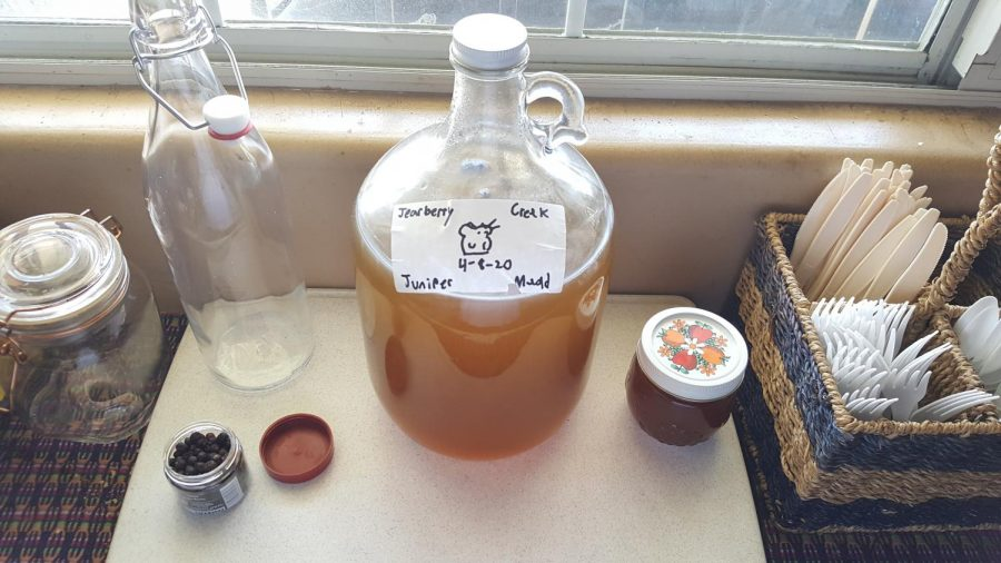 A homemade juniper mead.