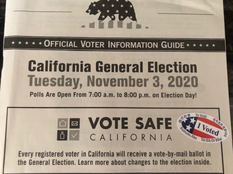 Photo courtesy of The Chaparral. Official voter registration guide.