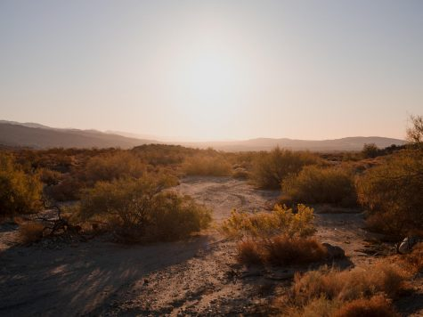 Desert X returns to the Coachella Valley March 12 2021