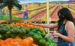 Photo Courtesy of The Chaparral/Marcela Carrillo. America Carlos reaching for oranges while grocery shopping at Cardenas.